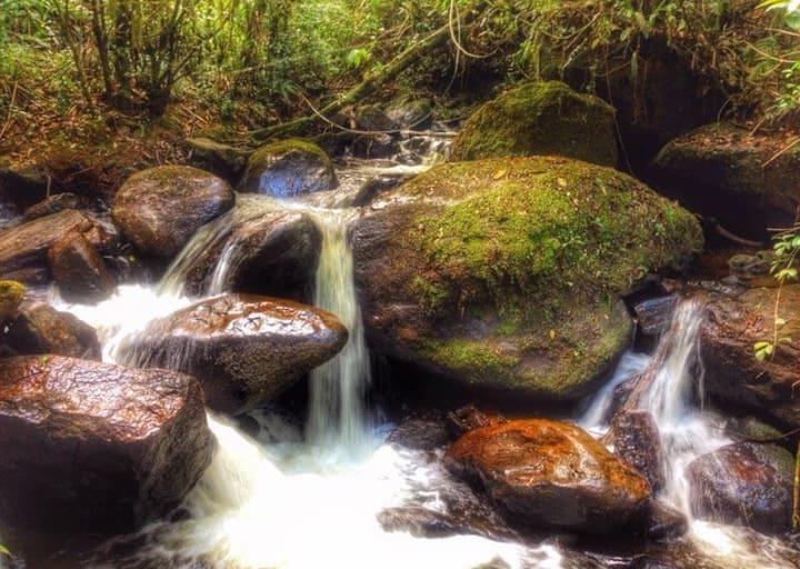 Cabana com Cachoeira Particular (Lussin)