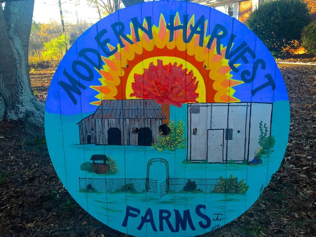 Modern Harvest Farms- Cedar Room - Woodruff - Hus