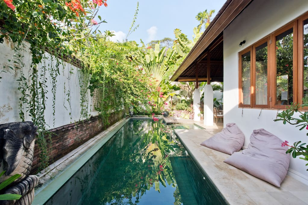 beautiful pool shrouded with overhanging gardens