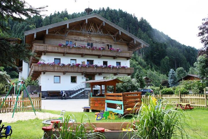 Ferienhof Kampfl Gänseblume