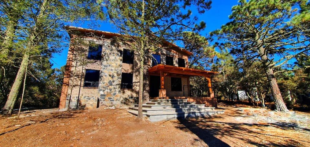 Cabaña Bosques de Monterreal MORITAS 1