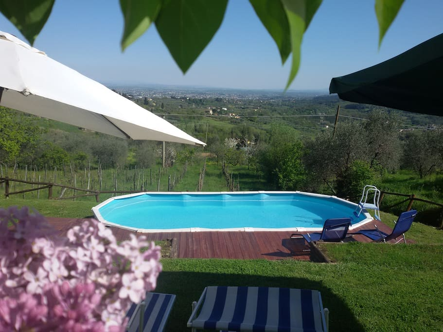 Garder  & Pool ( the pool is 7,30*3,60*1,20 shared with other 2 apartament inside my property Belvedere)