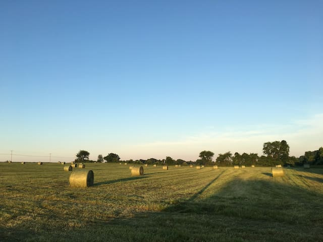 Hay season usually begins in June