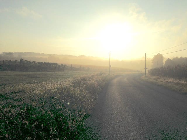 Early morning run on road that runs by our farm