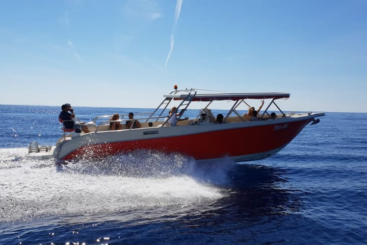 Private speedboat island hopping tour from Hvar