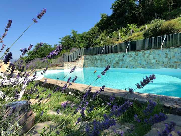 Podere Beatrice 20P large pool, WiFi near 5 Terre