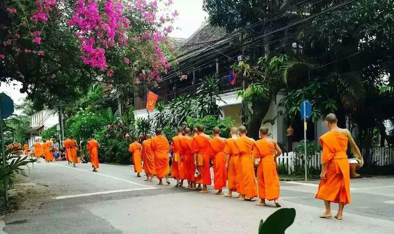 wisdom laos hotel