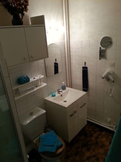 La salle de bain avec sa petite baignoire vous offre un minimum de confort, rangements ainsi qu'un panier de nécessaires pour votre hygiène personnel est mis à votre disposition pour vous dépanner : gel douche (femme/homme), crème à raser, tampon démaquillant, crème soins visage, etc... Vous y trouverez aussi un séchoir et un miroir pivotant ainsi que plusieurs format de serviettes et gant de toilettes  douillette car assez rescente.  Profitez bien.