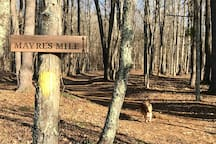 Mayre's Mile Trail in winter