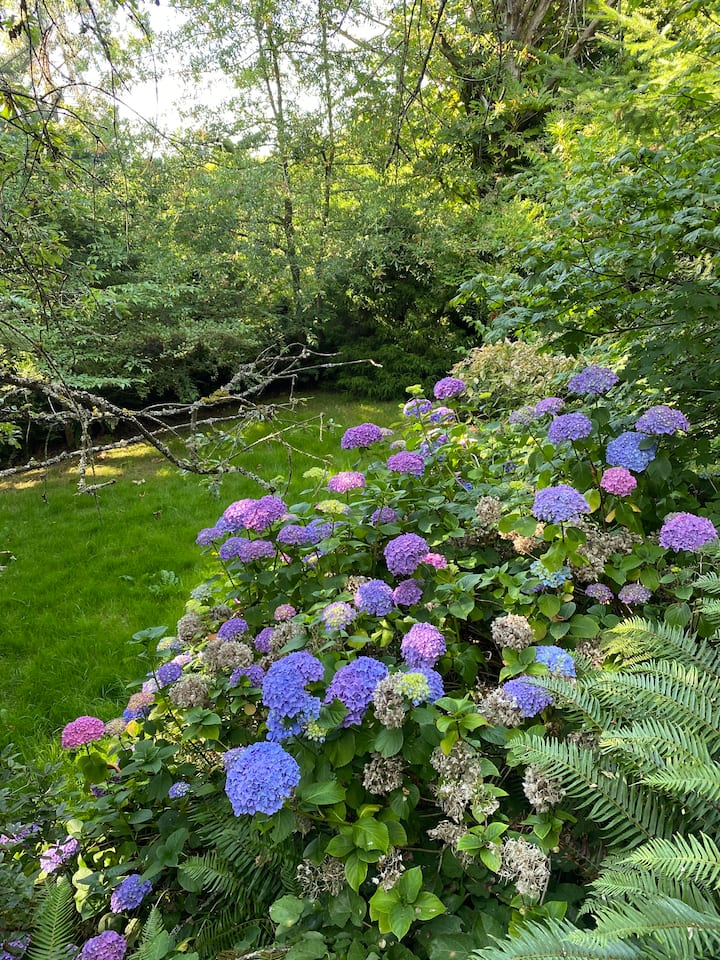 Lush garden with a view - Rainer View