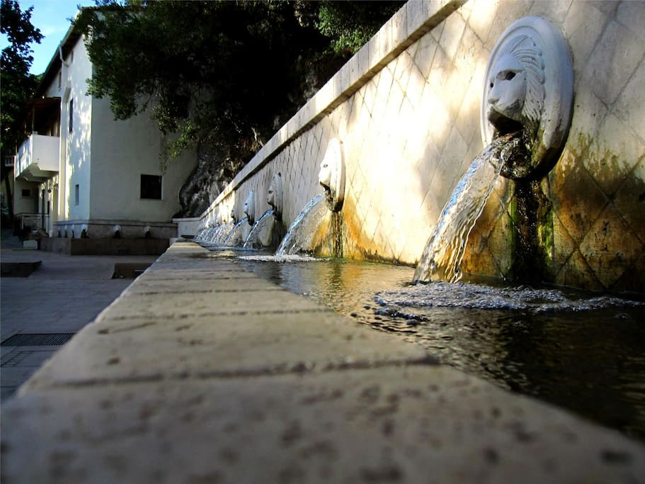The Lion Fountains