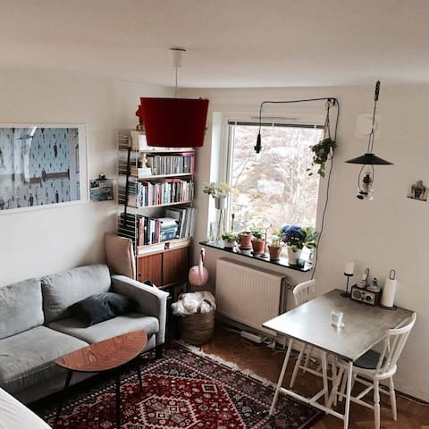Cozy one room apartment in Majorna - Göteborg - Appartement