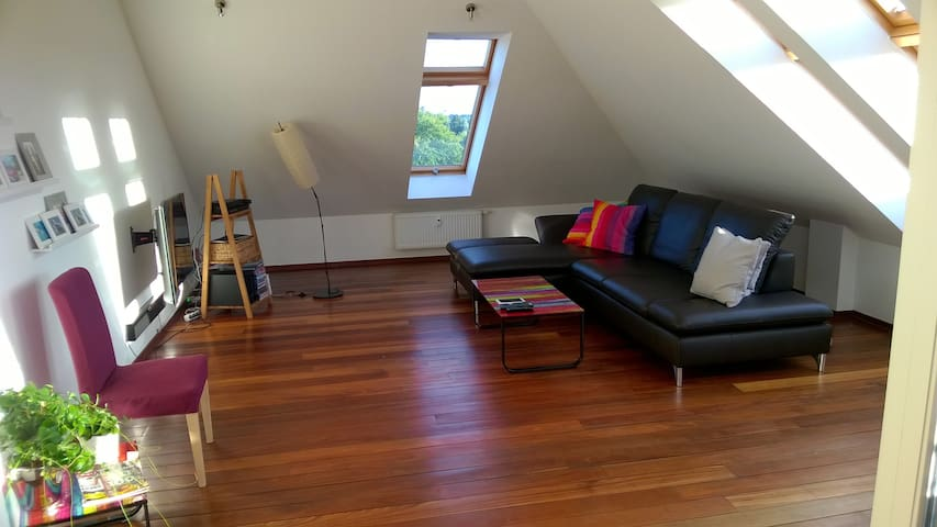 Sunny loft with two floors and roof terrace - Hannover - Condominium
