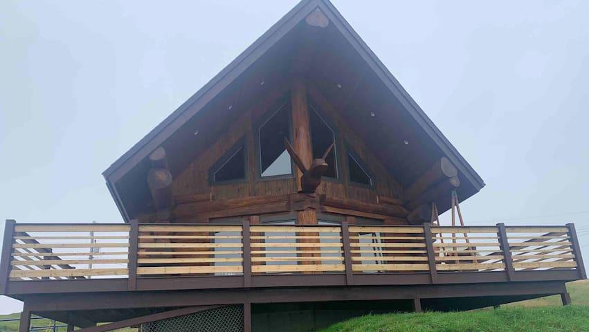 """The Duck"" Cedar Log Home"