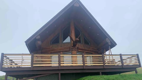 """The Duck"" Cedar Log Home"