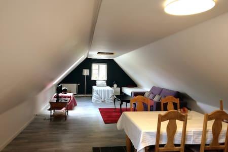 Stort gæsteværelse med eget badeværelse
