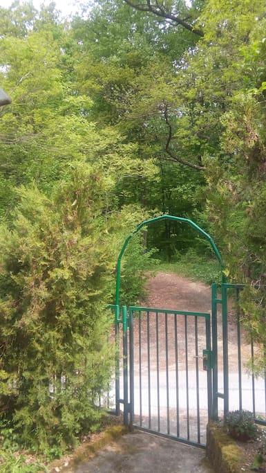 Glavni ulaz