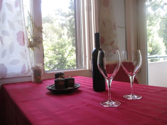 Apartment Elixir Nečujam - Nečujam - Lägenhet