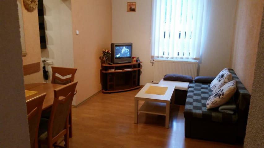 Samostatný byt, Jeseníky, Lipová-Lázně