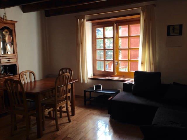 Apartamento 2 kms de Baqueira Beret - Tredòs  - Apartment