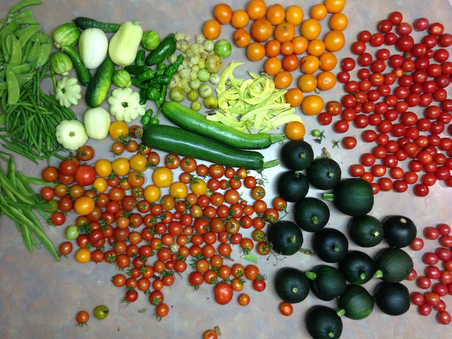 Some seasonal vegetables for you to cook something yummy