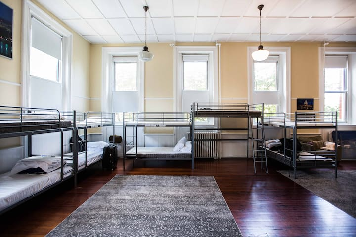 Comfortable, Clean, and Cozy shared space - Washington - Apartment
