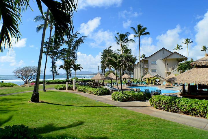 Oceanfront and Poolside Studio in Kapa'a! - Kapaa - Kondominium
