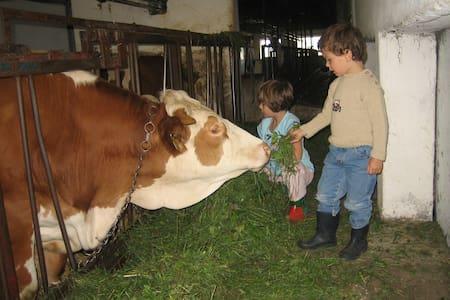 Ferienwohnung Arold Bauernhof zum Mitmachen - Creglingen - อพาร์ทเมนท์