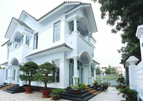 Tấn Phát's Guesthouse 3