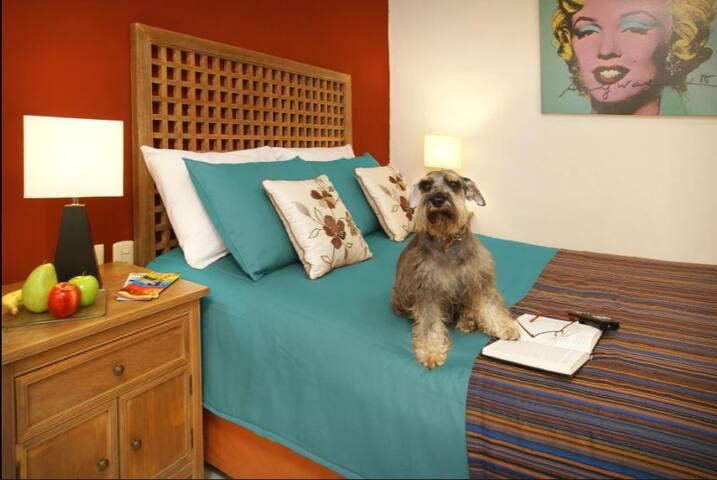 Santa Maria (Doble habitacion) (Double bed)
