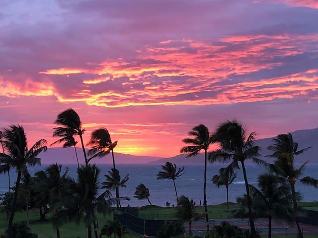 Unique Maui Sunset Oceanview 1 Bedroom Penthouse