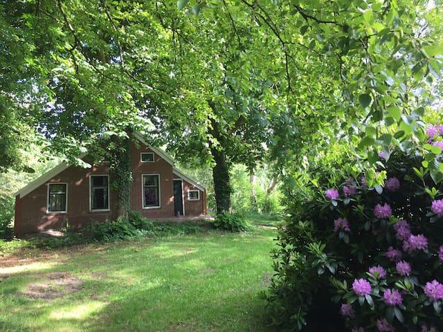 Vakantieboerderij in Groningen - Vriescheloo - Houten huisje