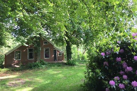 Vakantieboerderij in Groningen - Vriescheloo - Blockhütte