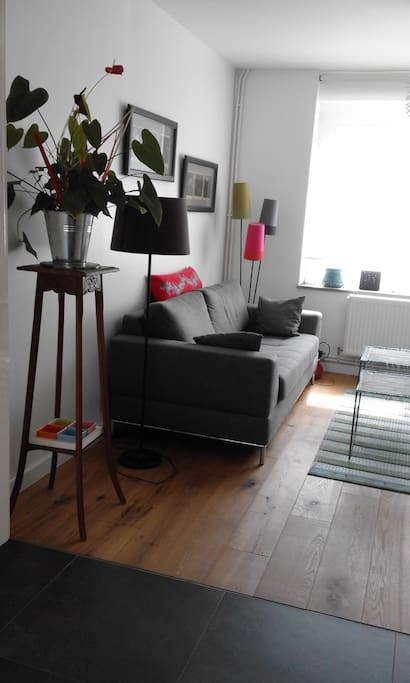 salon TV coté rue