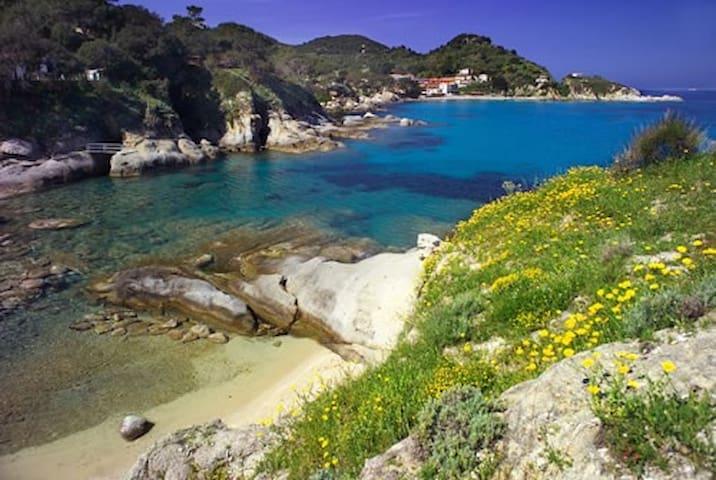"""Isola d'Elba Capo S.Andrea bilocale X4p """"Geranio"""" - Zanca"""