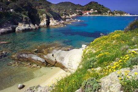 "Isola d'Elba Capo S.Andrea bilocale X4p ""Geranio"" - Zanca - Byt"