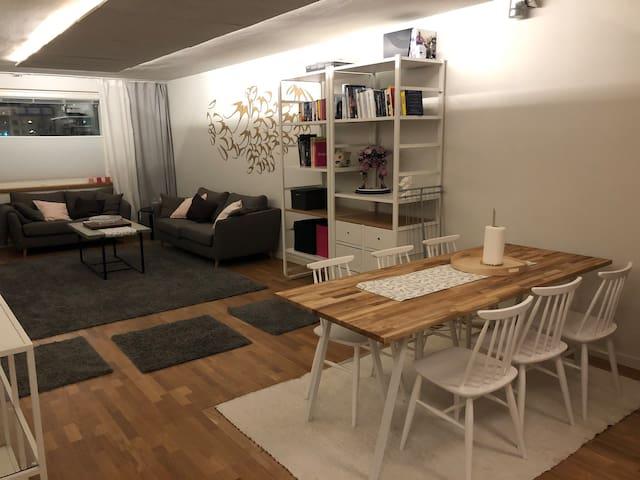 Designer apartment, prime location in Rovaniemi
