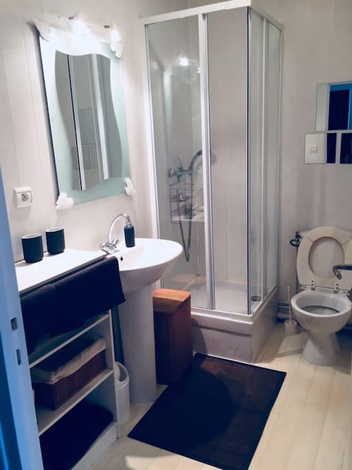 Salle de bains/toilettes