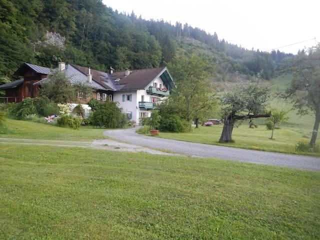 Ferienwohnung/Studio im Salzburger Land - Lofer - Appartement