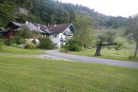 Ferienwohnung/Studio im Salzburger Land - Apartament