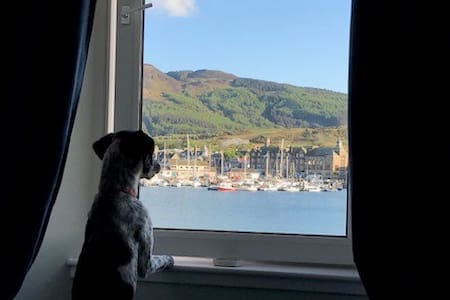 Harbour Holiday Flat Self Catering Campbeltown