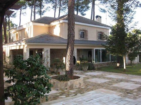 Gran chalet en Cuenca para tu familia y amigos