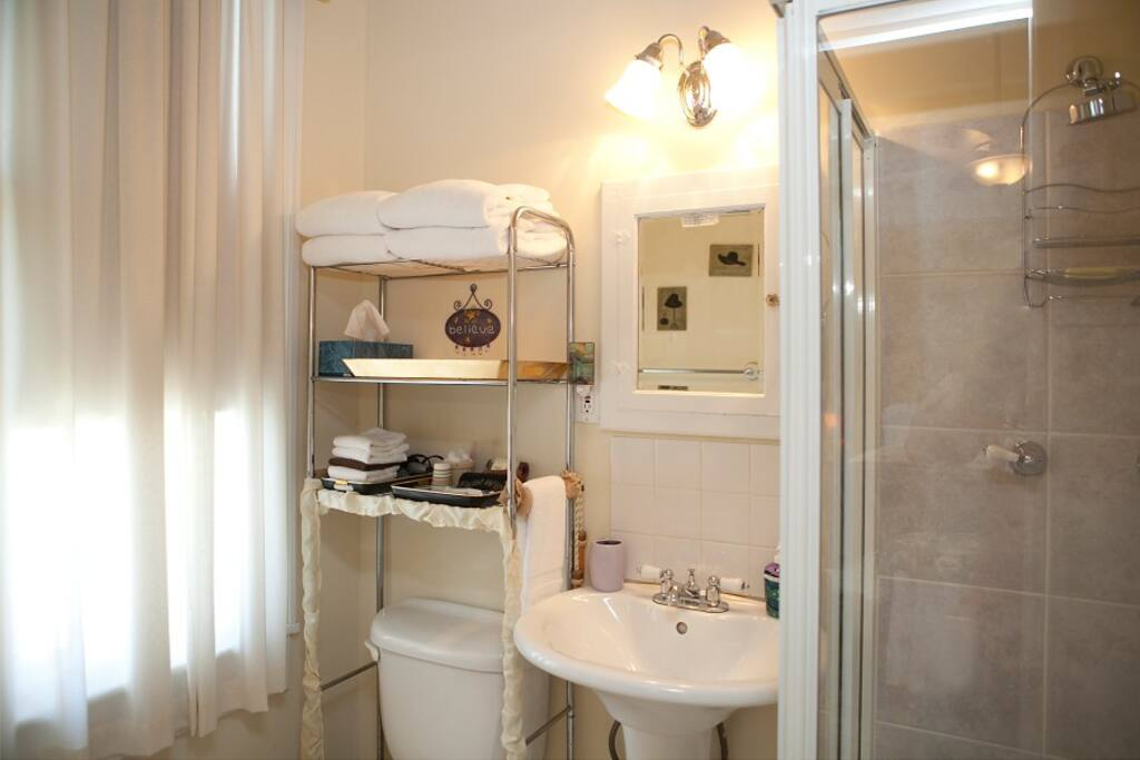This is a small bathroom with shower (no bathtub) and is located inside your room.  Plenty of space for your personal belongings.