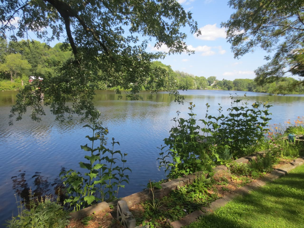 Mill Pond view