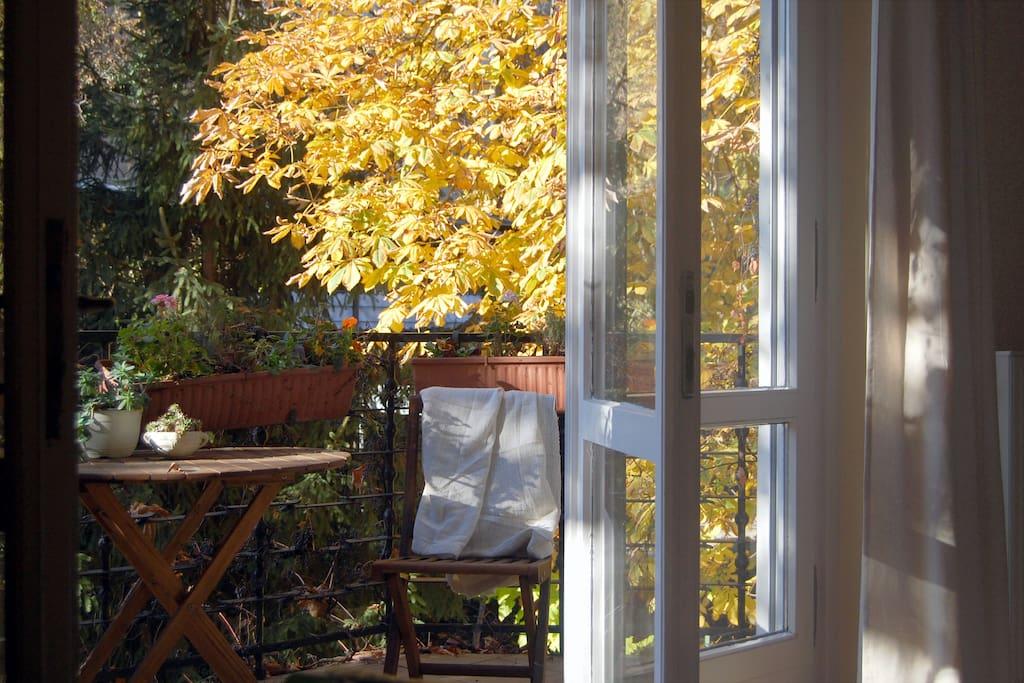 room 1a balcony