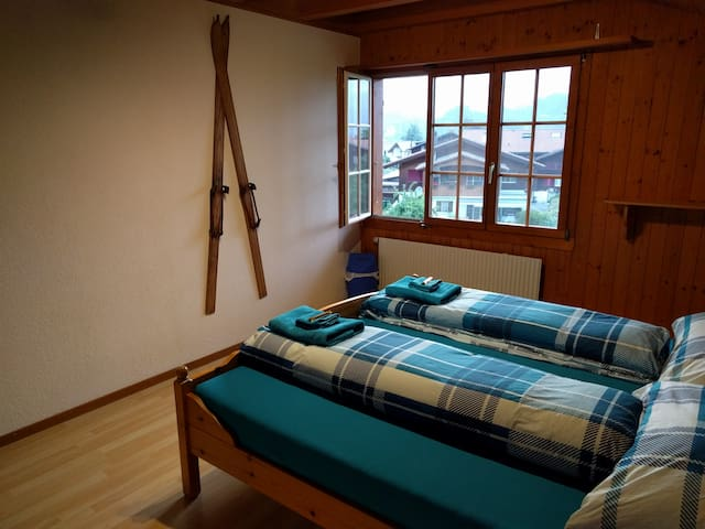 Chalet style room Interlaken area - Wilderswil - อพาร์ทเมนท์