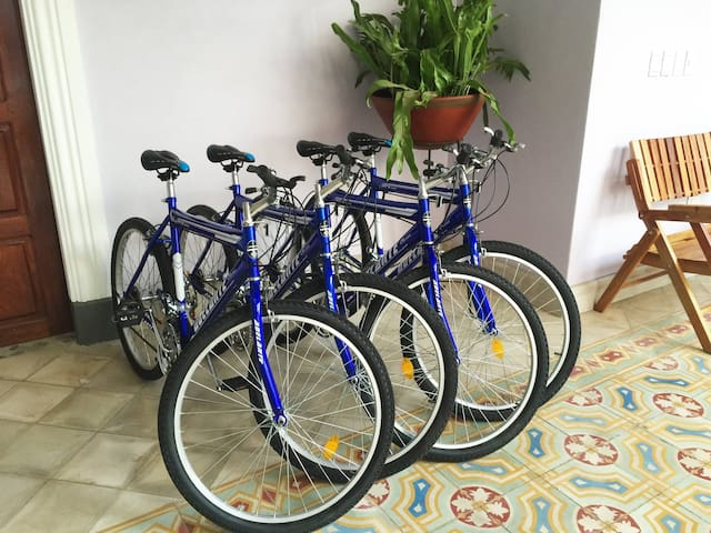 Bicycles available in the hotel for daily rental.