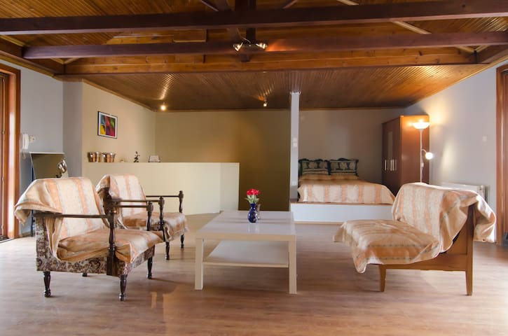 Airy, comfortable loft with two huge balconies - Kilkis