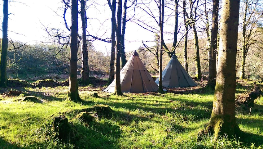 Wicklow Wilderness Adventure Tipi Camps for 6 ppl