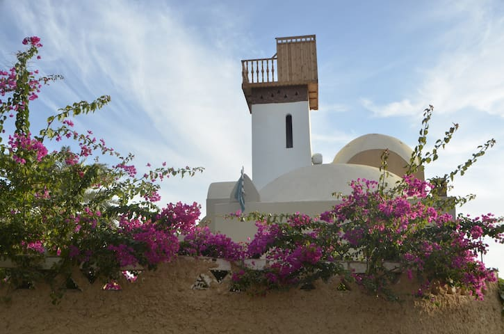 Villa Alexander - Siwa Oasis - Szoba reggelivel